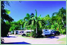 Tropical Hibiscus Caravan Park - Accommodation Adelaide