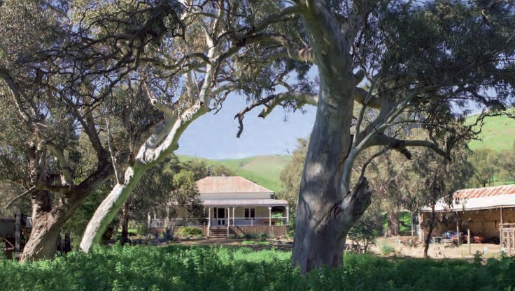 Brooklyn Farm Bed and Breakfast - Accommodation Adelaide
