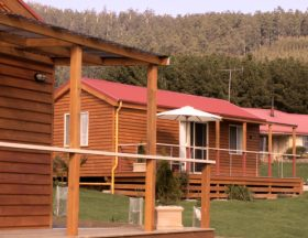 Maydena Country Cabins Accommodation  Alpaca Stud - Accommodation Adelaide