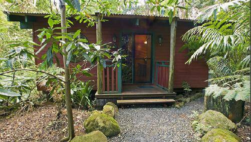 Springbrook Lyrebird Retreat - Accommodation Adelaide