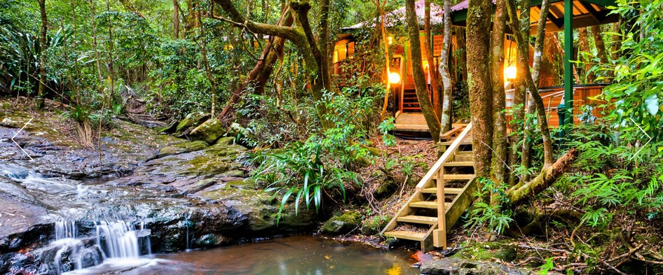 The Mouses House - Rainforest Retreat - Accommodation Adelaide