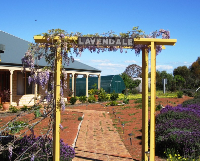 Lavendale Farmstay and Cottages - Accommodation Adelaide