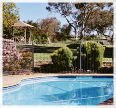 BEECHWORTH HEIGHTS - Accommodation Adelaide