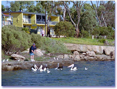 Almonta Holiday Apartments - Accommodation Adelaide