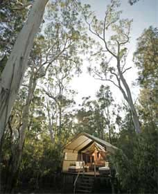 Paperbark Camp - Accommodation Adelaide