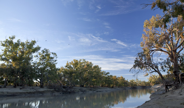 Darling River campground - Accommodation Adelaide