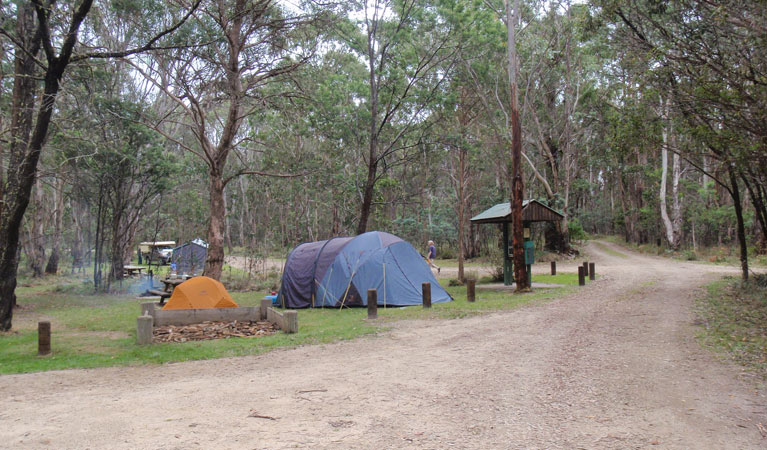Native Dog campground - Accommodation Adelaide