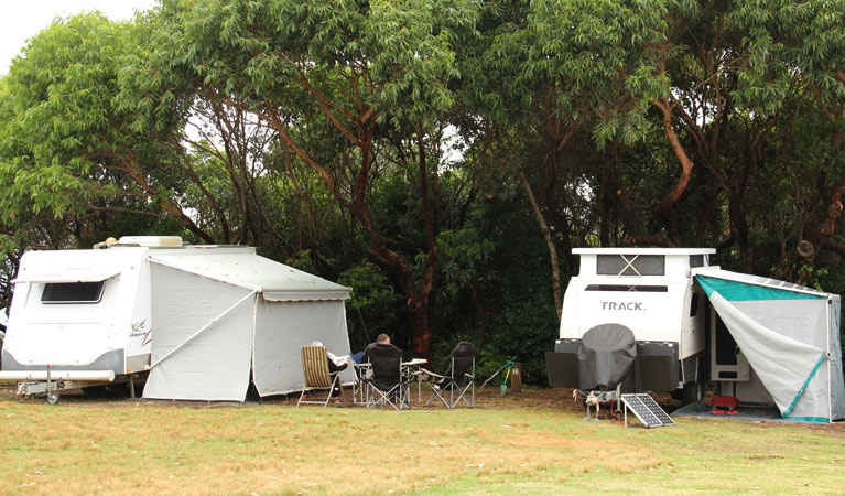 Pretty Beach campground - Murramarang National Park - Accommodation Adelaide