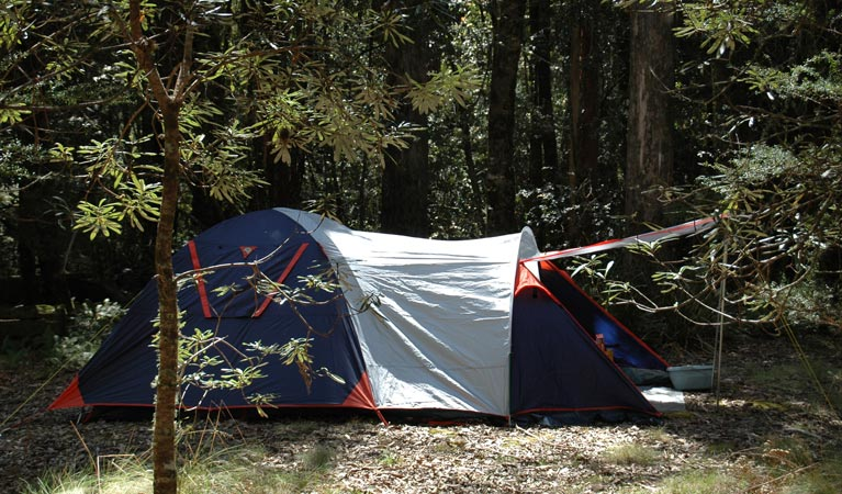 Thungutti campground - Accommodation Adelaide