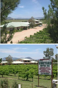 Mudgee Vineyard Motor Inn - Accommodation Adelaide