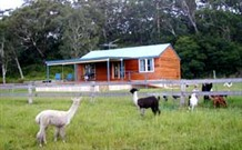 Moorallie Cottage Farm Stay - Accommodation Adelaide