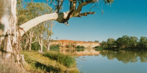 Border Cliffs River Retreat - Accommodation Adelaide