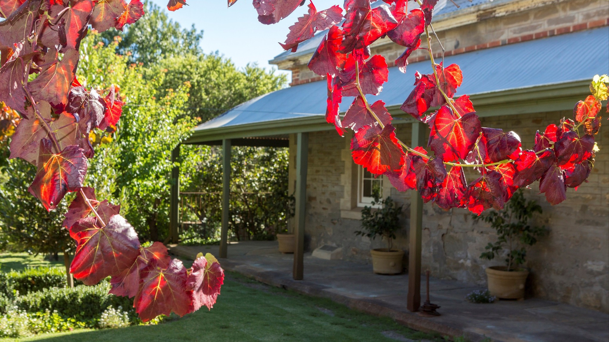 Grand Cru Estate Homestead - Accommodation Adelaide