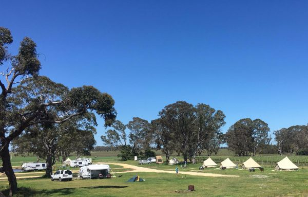 Coonawarra Bush Holiday Park - Accommodation Adelaide