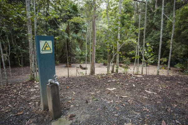 Eungella National Park Camping Ground - Accommodation Adelaide