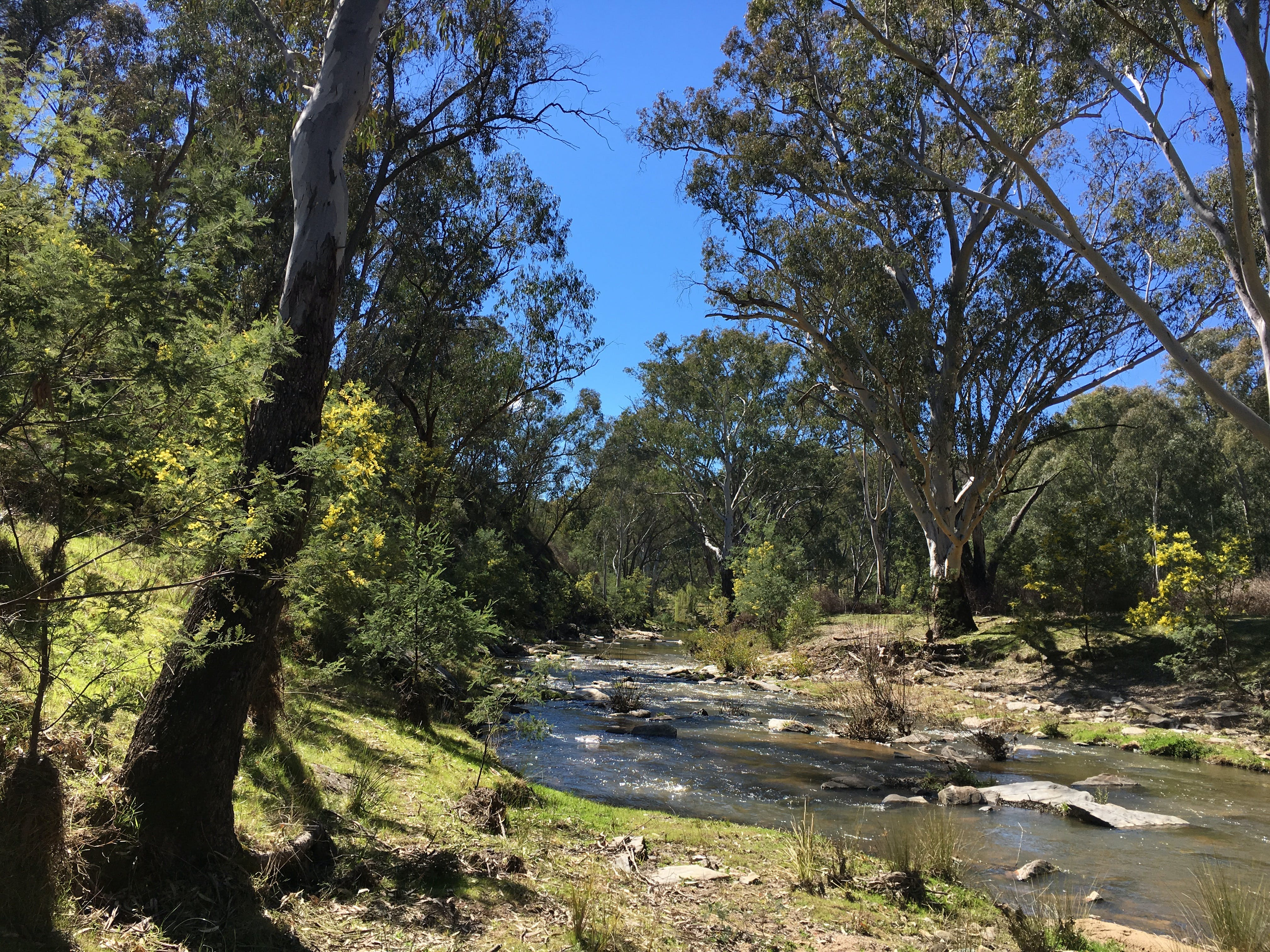 Highfield Farm and Woodland Bush Campsites - Accommodation Adelaide