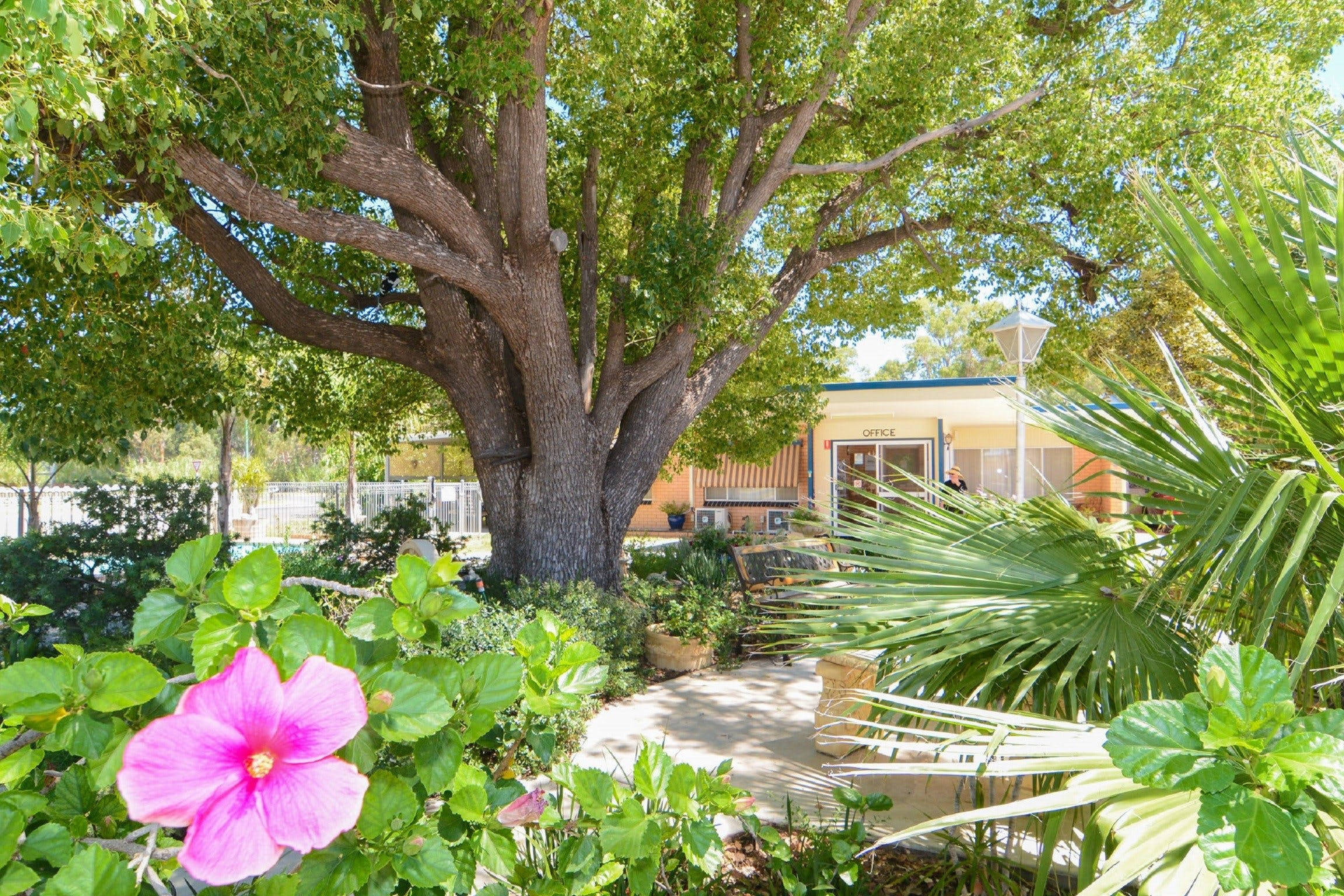 Balranald Sturt Motel - Accommodation Adelaide