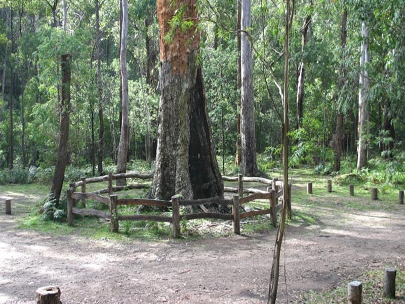 Six Mile Creek campground - Accommodation Adelaide