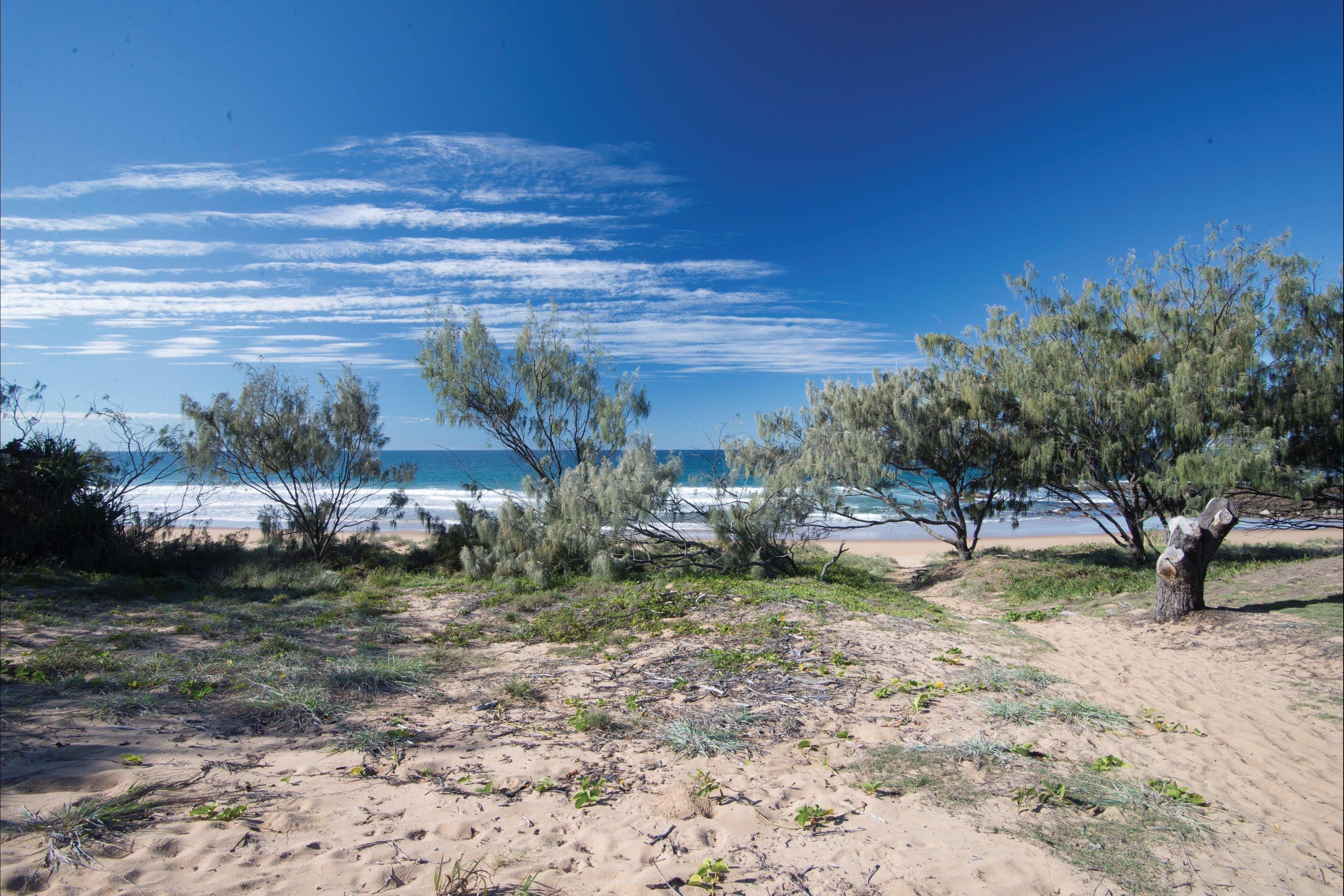 Deepwater National Park camping - Accommodation Adelaide