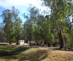 Balranald Caravan Park - Accommodation Adelaide