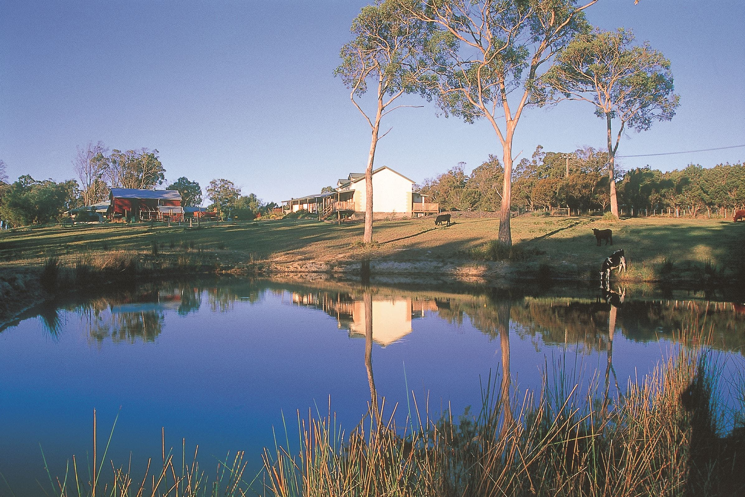 Platypus Park Country Retreat - Accommodation Adelaide