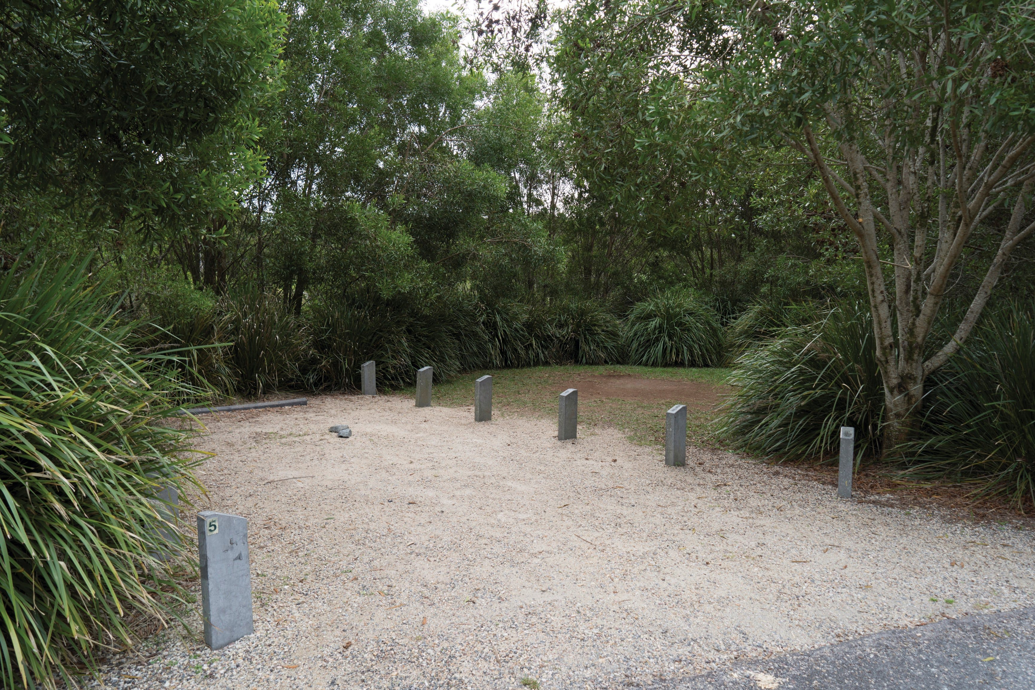 Springbrook National Park camping - Accommodation Adelaide