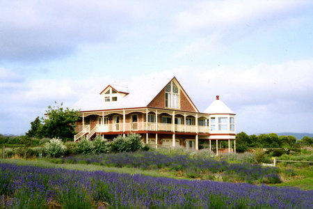 Serendipity Lavender Farm - Accommodation Adelaide