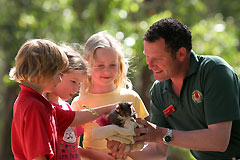Cleland Wildlife Park - Accommodation Adelaide
