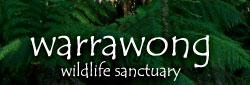 Warrawong Wildlife Park - Accommodation Adelaide