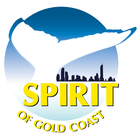 Spirit of Gold Coast Whale Watching - Accommodation Adelaide