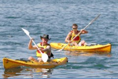 Manly Kayaks - Accommodation Adelaide