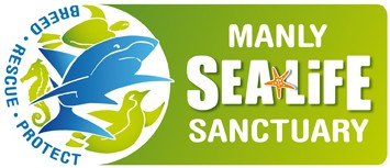 Manly SEA LIFE Sanctuary - Accommodation Adelaide