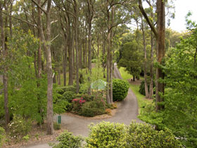 Mount Lofty Botanic Garden - Accommodation Adelaide