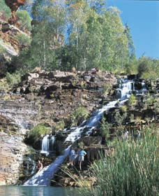 Fortescue Falls - Accommodation Adelaide