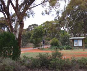 Gribble Creek Walk and Cycle Way - Accommodation Adelaide