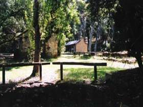 Wirrabara Forest Reserve - Accommodation Adelaide