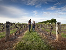 Coonawarra Wineries Walking Trail - Accommodation Adelaide