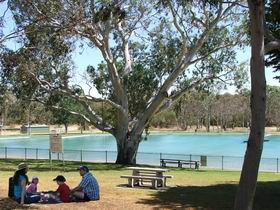 Naracoorte Nature Park and Swimming Lake - Accommodation Adelaide
