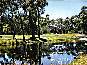 Smithton Country Club - Accommodation Adelaide