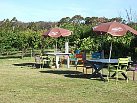 Cerise Brook Orchard  Family Golf - Accommodation Adelaide