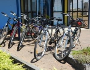 George Town to Low Head Walking and Cycling Trail - Accommodation Adelaide