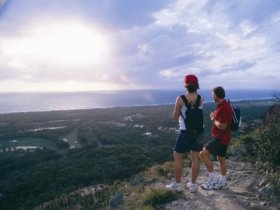 Mount Coolum National Park