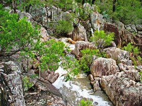 Crows Nest National Park - Accommodation Adelaide