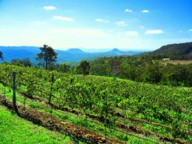Preston Peak Wines - Accommodation Adelaide