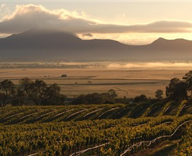 Montara Wines - Accommodation Adelaide