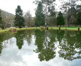 Mountain Fresh Trout and Salmon Farm - Accommodation Adelaide