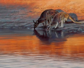 Steve Morvell Wildlife Art - Accommodation Adelaide