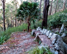 Wodi Wodi Walking Track - Accommodation Adelaide