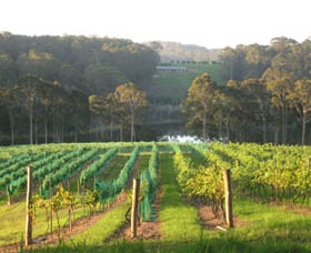 Tilba Valley Wines - Accommodation Adelaide