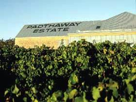 Padthaway Estate Winery - Accommodation Adelaide